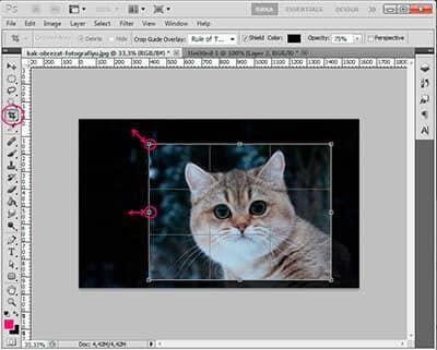 Как в фотошопе обрезать фото